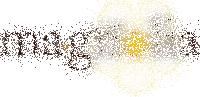 ma.gnolia's logo, fading
